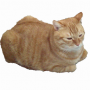 猫ランナーチップ君
