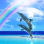 Dolphin☆Rainbow Free