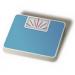 シンプル体重レコーダー